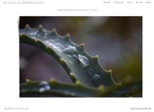 photoblog Armando Leotta