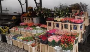 Via dei fiori
